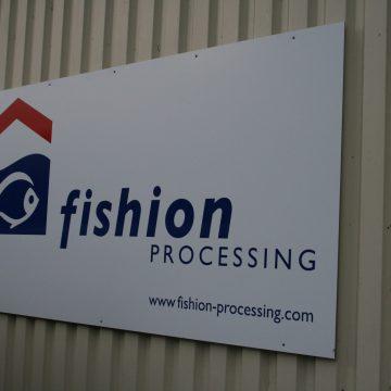 Fishion processing (5)